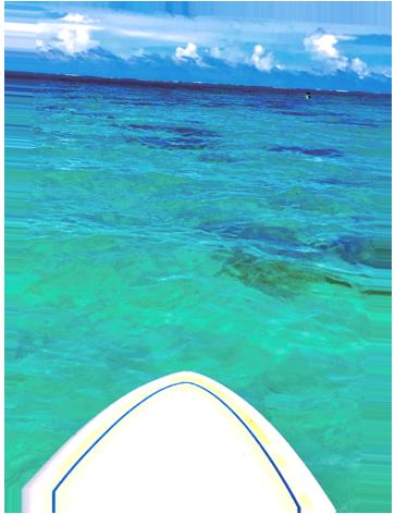 Come enjoy some ocean fun courtesy