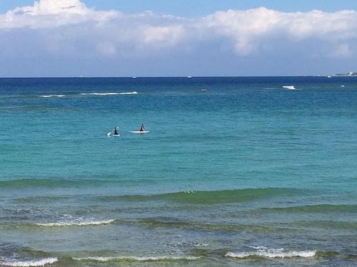 沖縄のマリンスポーツはキャンセル料はいつから?予約の時に確認しておきたいこと!