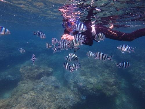 【沖縄本島】人気ホテルから近くの海遊びスポット!
