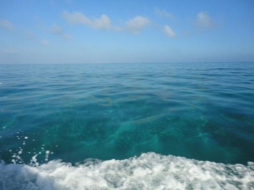 そこに海があるから、新しい海遊び発見!