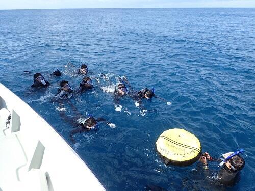 本日もご案内!沖縄『シュノーケル体験』!5歳から参加OK!北谷町で沖縄らしいサンゴの海をみに行こう!