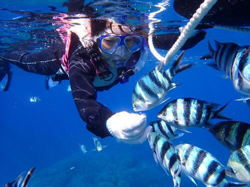 沖縄本島!北谷サンゴの花畑の海でのんびり『シュノーケリング』体験!@シーパーク北谷