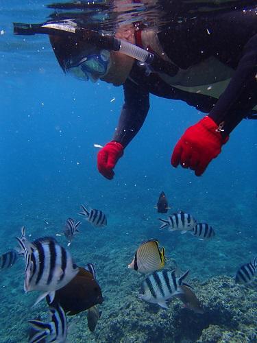 沖縄、8月最後の週末、夏休み、海遊び、北谷発、ボートチャーター、ダイビング、シュノーケリング、スタンドアップパドル、SYP、花火.JPG