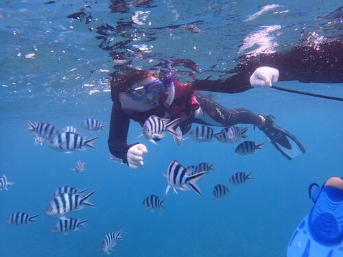 【沖縄旅行】冬こそ来てほしい!沖縄の青く透き通る海!!@シーパーク北谷