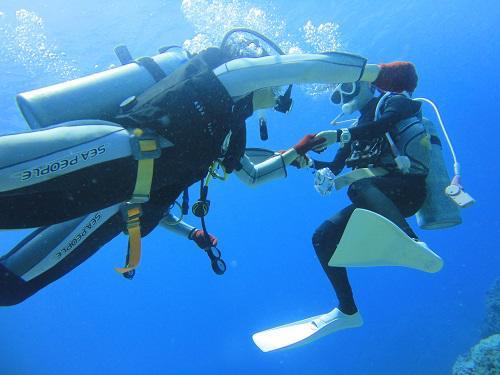 冬での沖縄でダイビングしよう