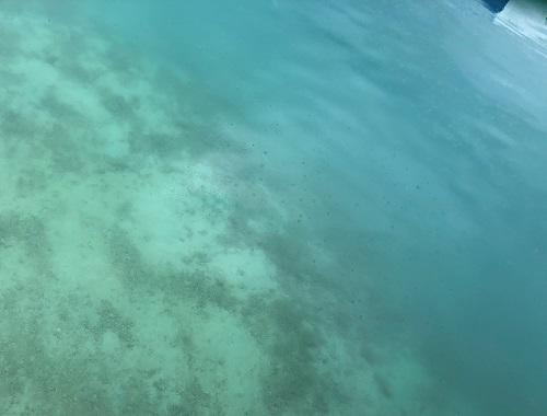 雨音を聞きながら、サーフィン&ダイビング