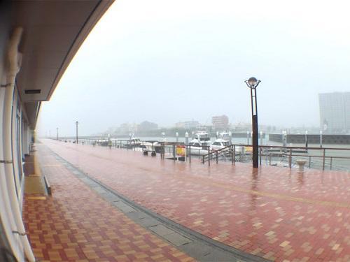 やっときた梅雨!いきなりの台風!?