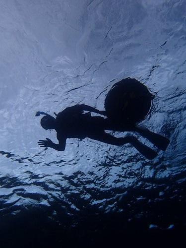 春の海、沖縄シュノーケリング