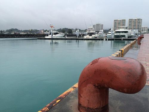 シャッターチャンスがいっぱいの冬の沖縄