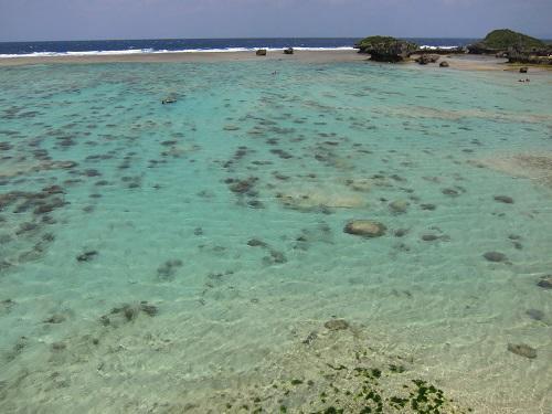 沖縄秘密のビーチでシュノーケリング
