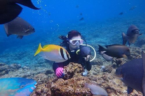 春の海、沖縄体験ダイビング