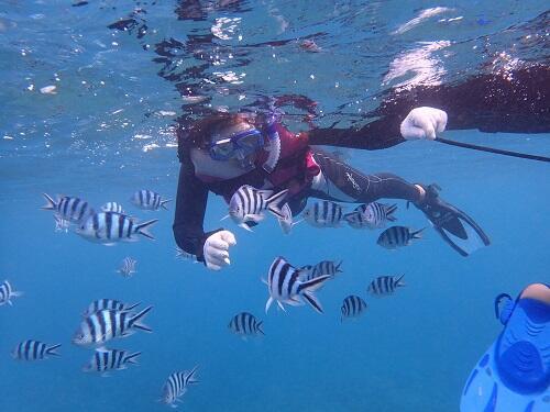 沖縄 シュノーケル サンゴが多いところ