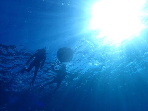 沖縄の海は寒い時期でも楽しめる!!人混みを避けて沖縄を楽しもう♪@シーパーク北谷