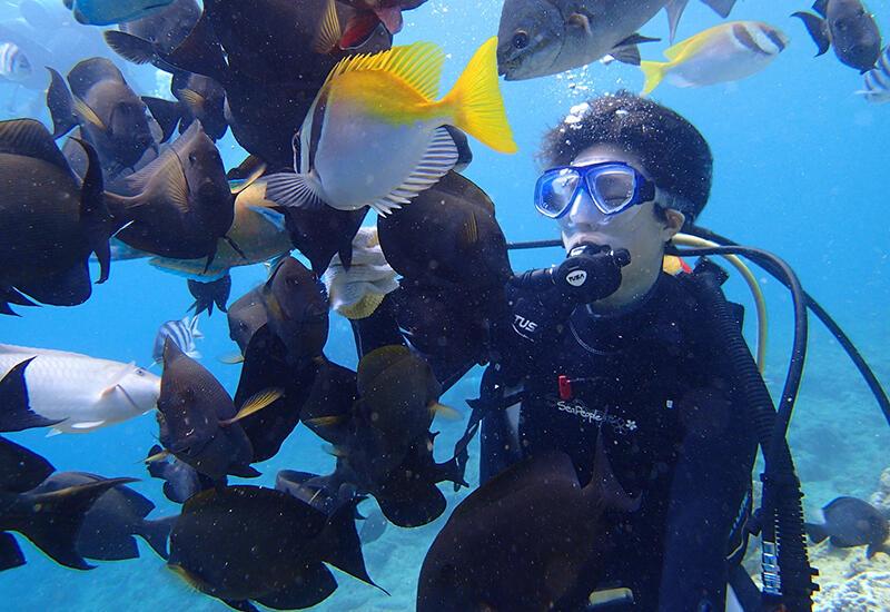 エサやりをすると周りを囲まれるくらいの魚たちが!